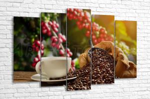 Кофе и кофейное дерево
