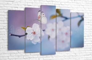 Над ветвью цветущей сакуры