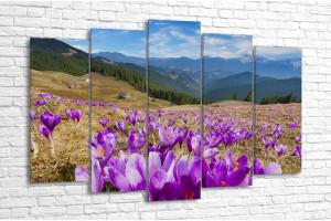 На склоне цветочной горы