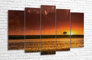 Закат над пшеничным полем