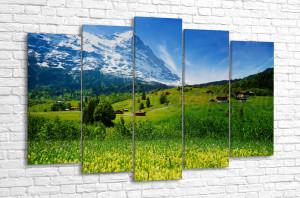 Цветочная Швейцария