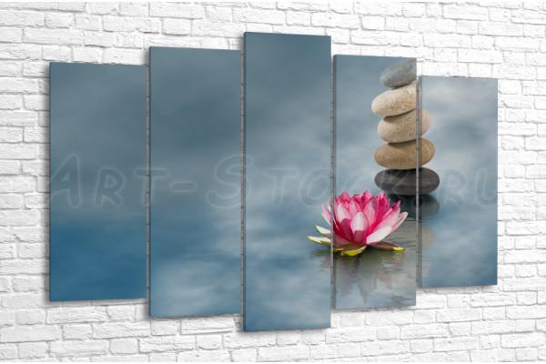 Камни и цветок лотоса на воде