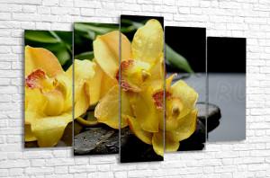 Жёлтая орхидея и бамбуковые листья