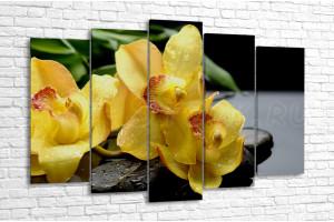 Желтая орхидея и бамбуковые листья