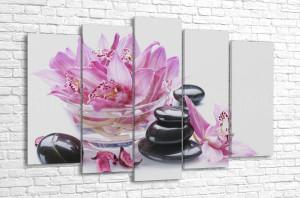 Цветы орхидеи и камни для спа
